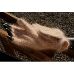 Mitaines avec capuche camel